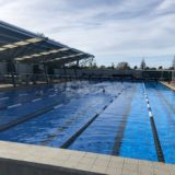 Birkenhead swimming pool auckland